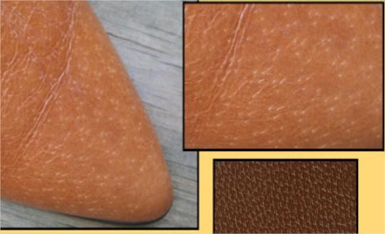 cách nhận biết dây lưng da thật